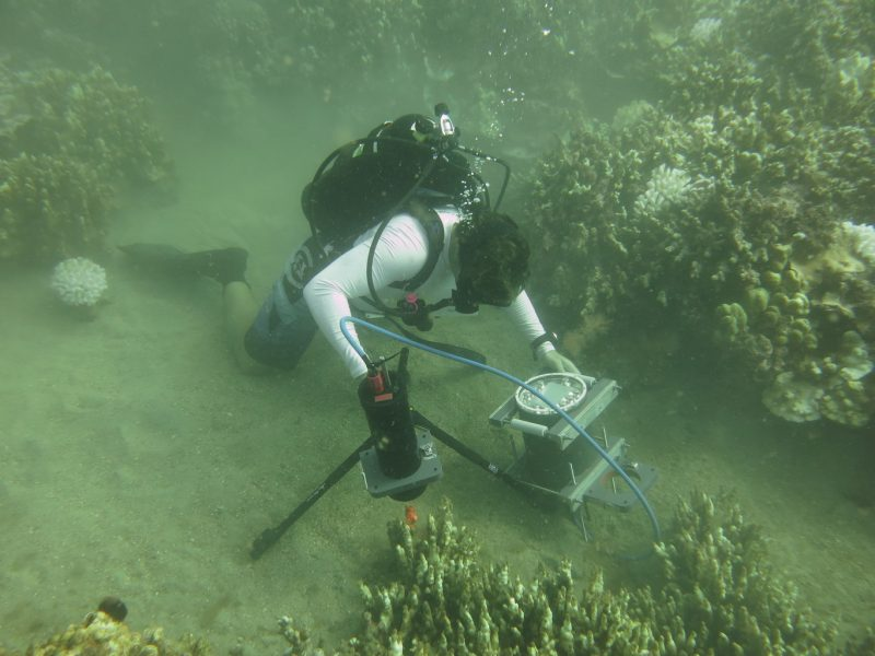 Andrew Mullen deploys the BUM during coral reef studies in Maui. Image via Emily L. A. Kelly/UCSD