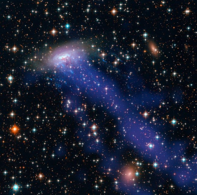 ESO 137-001 is a perfect example of a spiral galaxy zipping through a crammed cluster of galaxies. Gas is being pulled from its disc in a process called ram pressure stripping. The galaxy appears to be losing gas as it plunges through the Norma galaxy cluster. Photo via NASA/ ESA/ Hubble Heritage Team (STScI/AURA)/UCRToday.