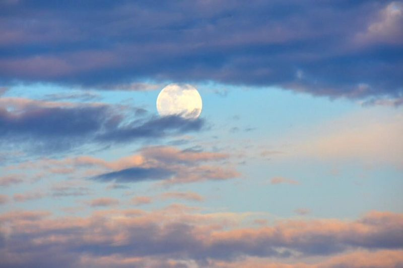 A full moon rises at sunset. A day or two before full moon, you might catch sight of the moon ascending in the east in evening twilight. Beautiful! Photo taken August 17, 2016 by Jenney Disimon in Sabah, North Borneo.