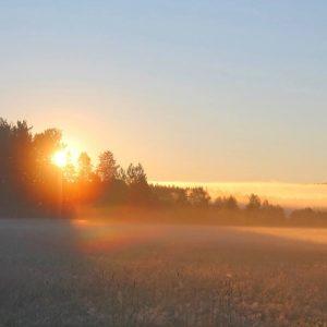 Rainbow light in the mist sweden today 39 s image earthsky for Boden sweden
