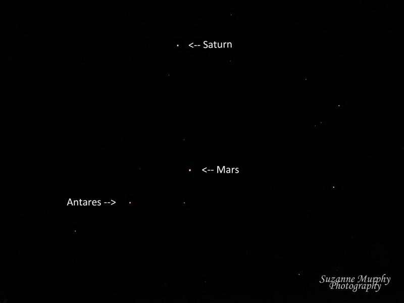 Mars, Saturn and Antares on August 20, from Suzanne Murphy in Wisconsin.