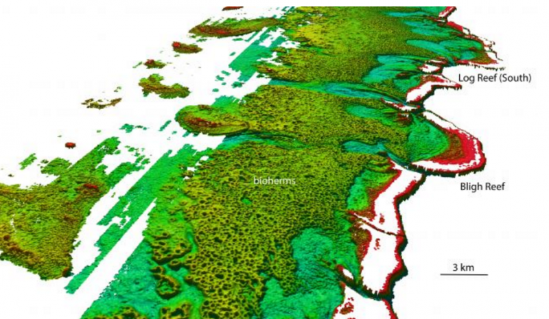 North-westerly view of the Bligh Reef area off Cape York. Depths are colored red (shallow) to blue (deep), over a depth range of about 50 meters. Image via James Cook University.