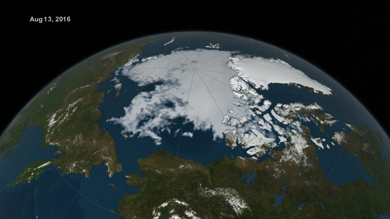 Visualization of Arctic sea ice extent on Aug. 13, 2016. Image via NASA Goddard's Scientific Visualization Studio