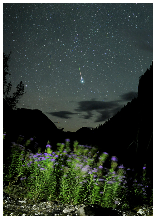 Robert Ede caught this Perseid on the night of August 12 from British Columbia, Canada.