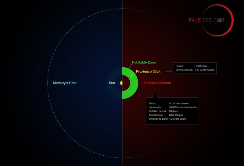 This infographic compares the orbit of the planet around Proxima Centauri (Proxima b) with the same region of the Solar System. Proxima Centauri is smaller and cooler than the Sun and the planet orbits much closer to its star than Mercury. As a result it lies well within the habitable zone, where liquid water can exist on the planet's surface. Image via ESO/M. Kornmesser/G. Coleman.