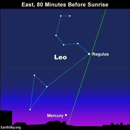 The constellation Leo adorns the eastern predawn sky at this time orf year, and the zodiacal light runs astride the ecliptic - Earth's orbital plane projected onto the constellations of the zodiac. As darkness gives way to dawn, watch for the planet Mercury to finally climb over the horizon.