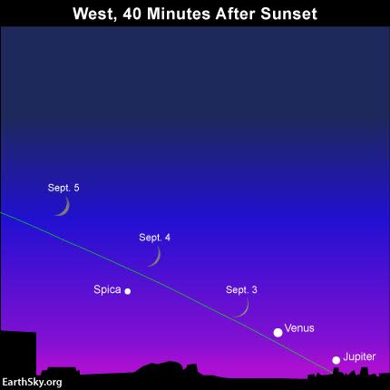 The bow of the waxing crescent moon points toward the planets Venus and Jupiter in early September 2016. This month, Jupiter quickly falls into the glare of sunset while Venus slowly but surely climbs away. Read more.