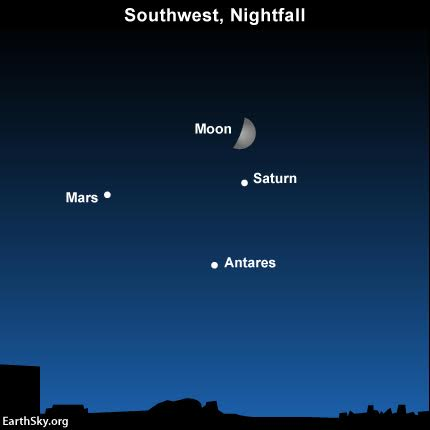 Use the moon on to find the colorful threesome - Mars, Saturn and Antares - on September 8. Read more.