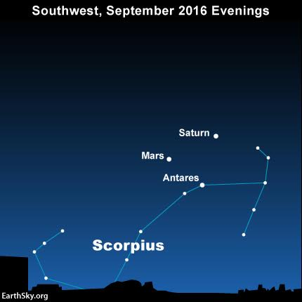You won't need an optical aid to see the planets Mars and Saturn, plus the star Antares, on September 2016 evenings. They are all bright enough to see with the eye alone!