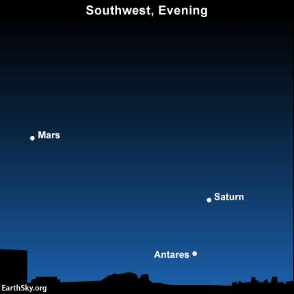 The planets Mars and Saturn, plus the star Antares pop out at nightfall.