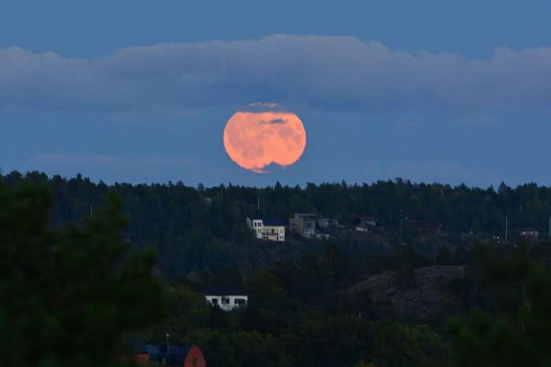 Moonrise over Saltsjöbaden, Sweden. Image via Indranil Sinha.