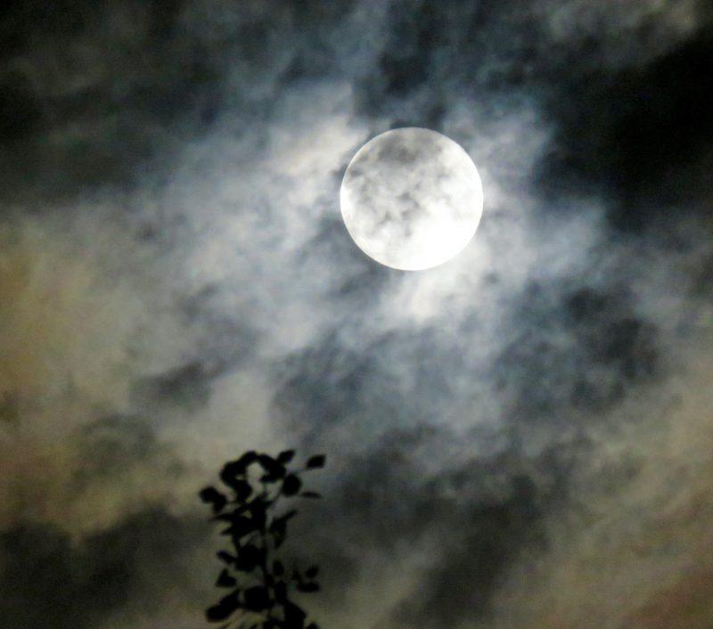 Beautiful Harvest Moon shortly before rain, September 16, 2016, via Jan HR in Delton, Michigan.