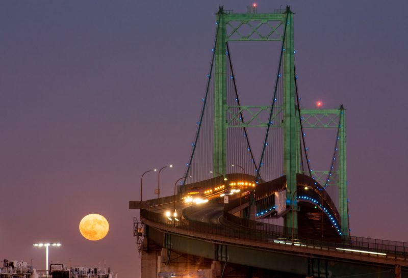 Green-lit suspension bridge with low yellow moon beside it in deep twilight.