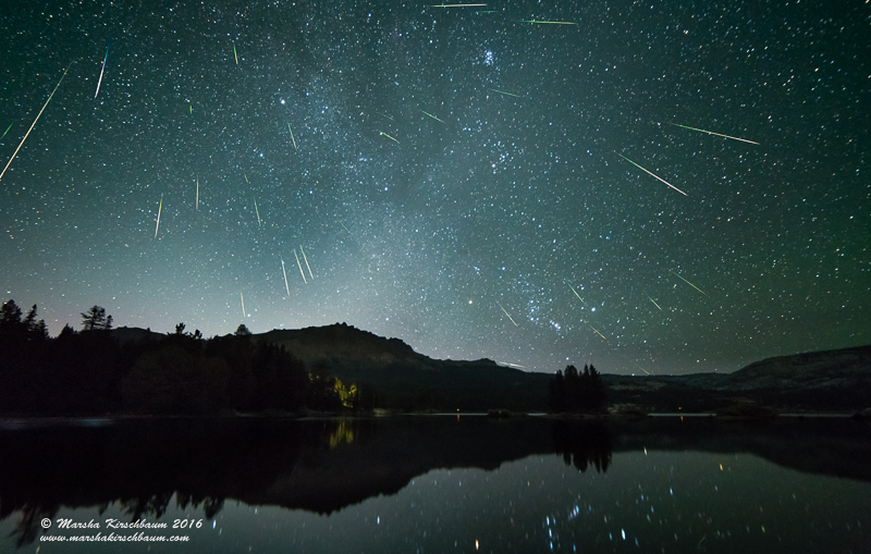 Composite image showing many meteors falling in a dark sky.