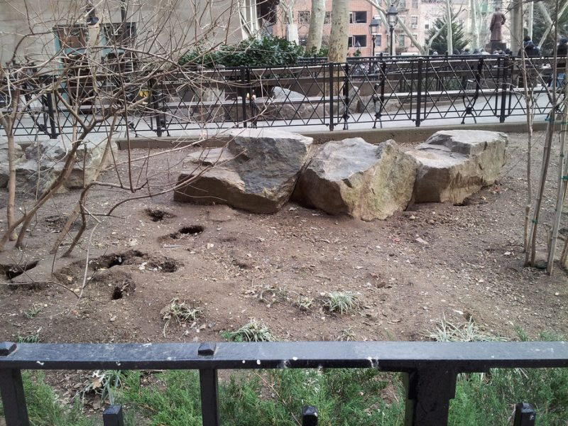 Public park in Manhattan, home to a rat population with over 100 visible burrows. Image via Dr. Michael H. Parsons