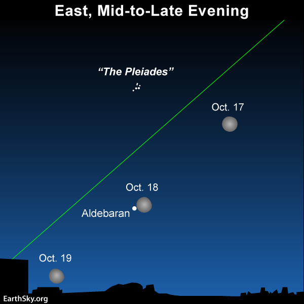 See the moon in the eastern evening sky, and then in the western morning sky.