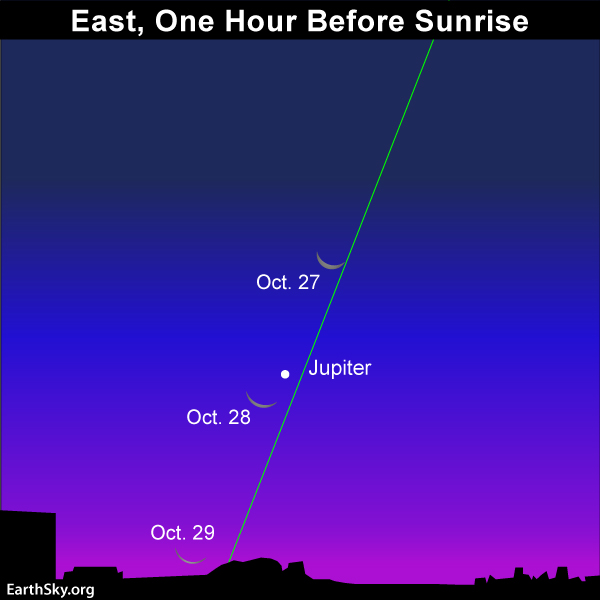 The moon is high above Jupiter on the morning of October 26, but closer on October 27 and closer still on October 28.