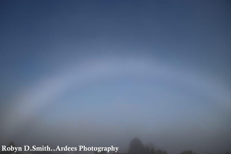 Diffuse white arc in slate blue dawn sky.