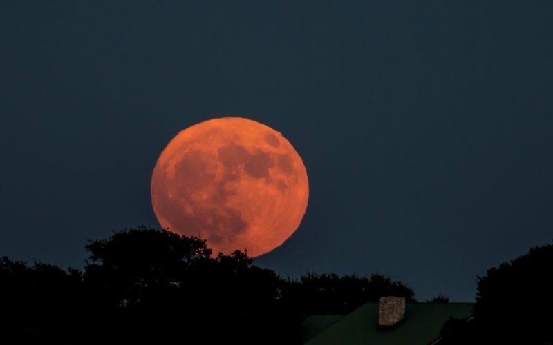 Karen Tarlow in Austin, Texas wrote: