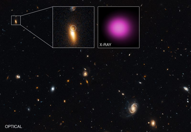 Astronomers have discovered an extremely luminous, variable X-ray source located outside the core of its parent galaxy. This black hole likely has a mass of about 100,000 suns, and may have once been part of a smaller galaxy that merged with a larger one, leaving this black hole on the outskirts of the combined galaxy. Scientists refer to such objects as