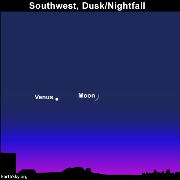 The moon will be a fatter waxing crescent - easier to see after sunset - when it passes Venus on December 2, 2016. Read more.