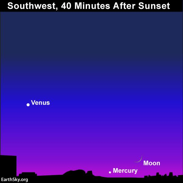 A very thin young moon will be extremely low in the west after sunset on November 30.  It'll be near the planet Mercury.  Read more.