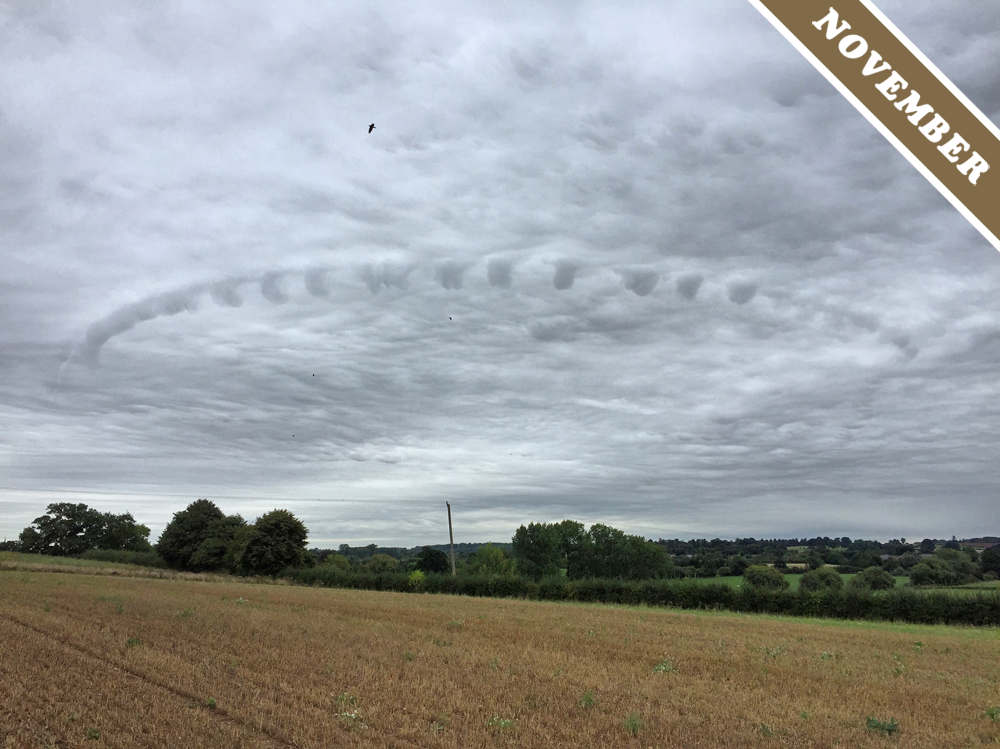 This mysterious cloud was the Cloud Appreciation Society's Cloud of the Month for November. Image via cloudappreciationsociety.org.