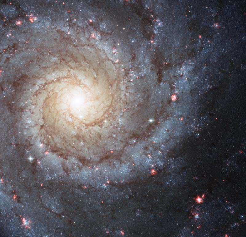 Messier 74 as seen by the Hubble Space Telescope. Photo credit: NASA,ESA and the Hubble Heritage