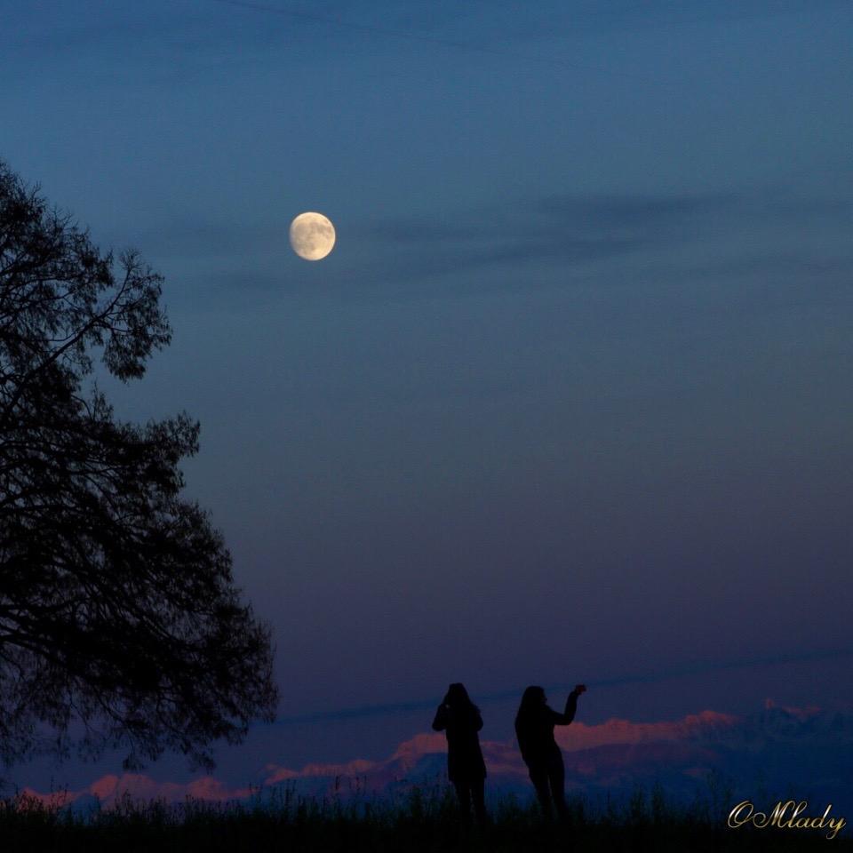 Waxing gibbous moon this week | Tonight | EarthSky