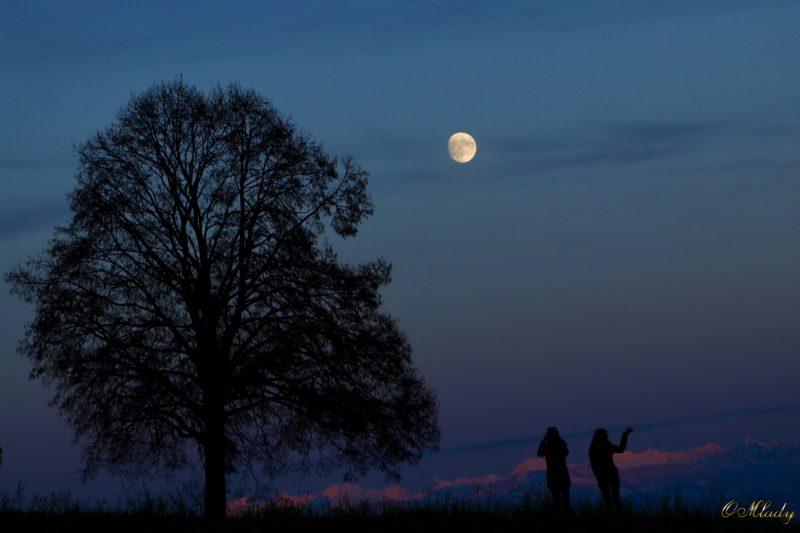 Waxing gibbous moon on November 12, 2016 by OMladyO in Switzerland.