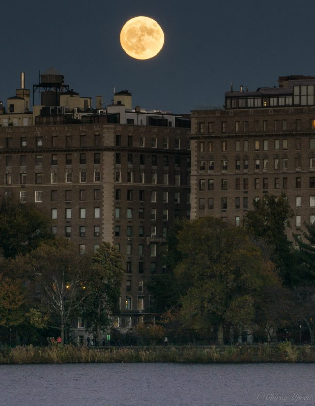 Bright supermoon Sunday evening seen from Central Park in New York City, by Chirag Upreti.