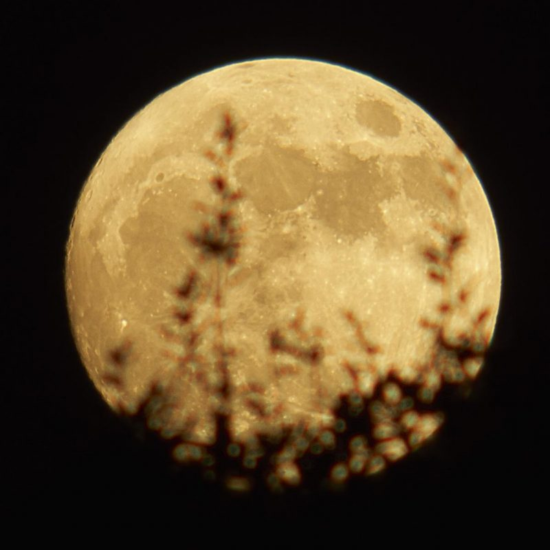 Rob Pettengill in Austin, Texas captured Sunday evening's rising, waxing supermoon.