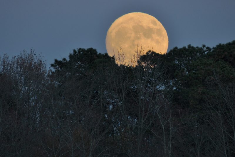 Jerry Elbertson in New Jersey caught Sunday evening's moon as it was rising.