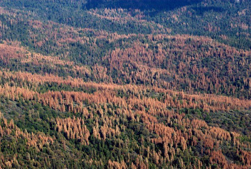 Drought Still Grips Southern California Earth Earthsky