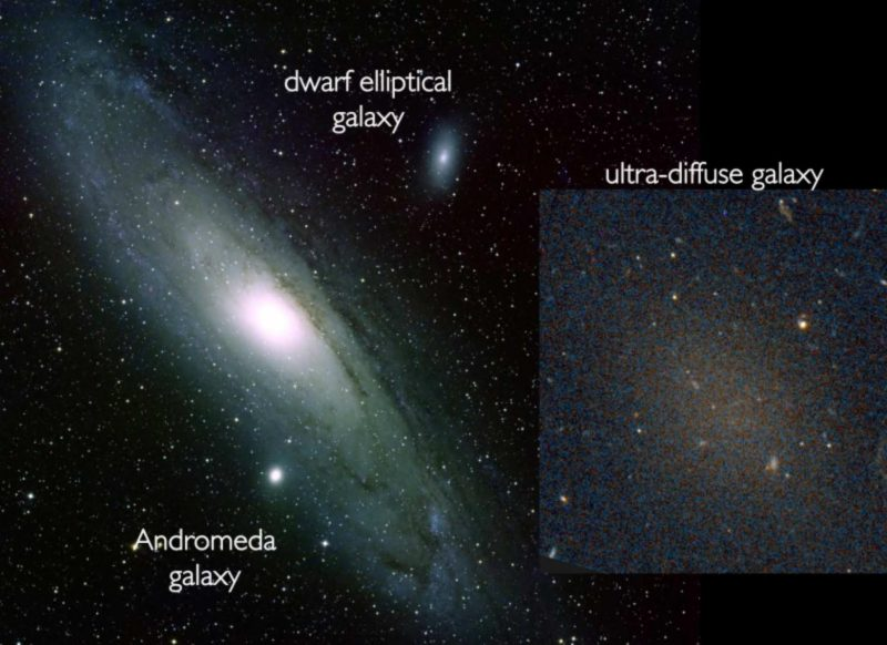 Comparison of an ultra-diffuse galaxy with the nearby Andromeda galaxy, an ordinary spiral galaxy and our Milky Way's nearest large neighbor.