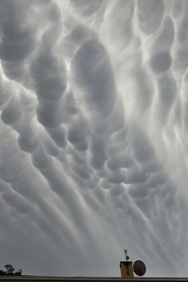 Mammatus clouds, deformed by wind, on December 4. Photo by Peter Lowenstein.