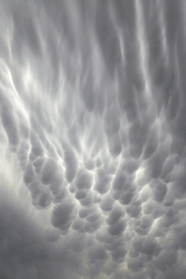 Wind-deformed mammatus clouds under the approaching anvil cloud. December 4 photo by Peter Lowenstein.