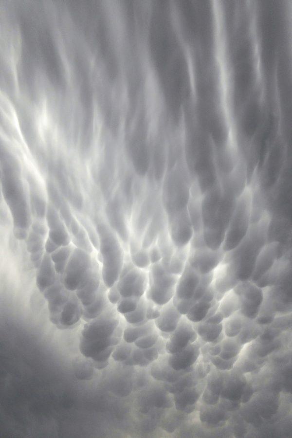 Wind-deformed mammatus clouds under the approaching anvil cloud. December 4 photo by Peter Lowenstein.