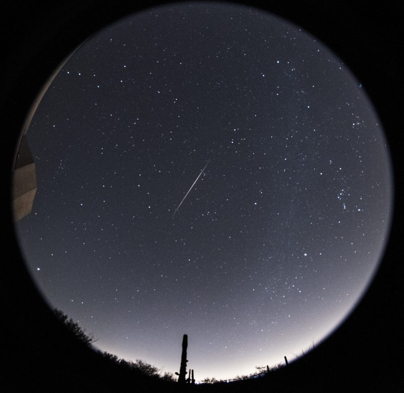 Bright early Geminid meteor over Tucson, Arizona by Eliot Herman.
