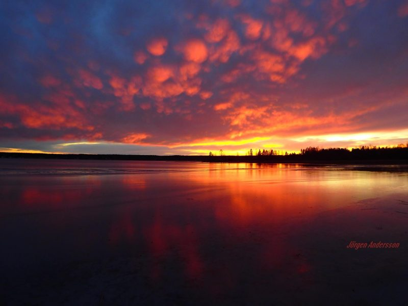 Jörgen Norrland Andersson in Sweden couldn't see the November 30 moon due to clouds ... but what beautiful clouds! Last sunset of November 2016.