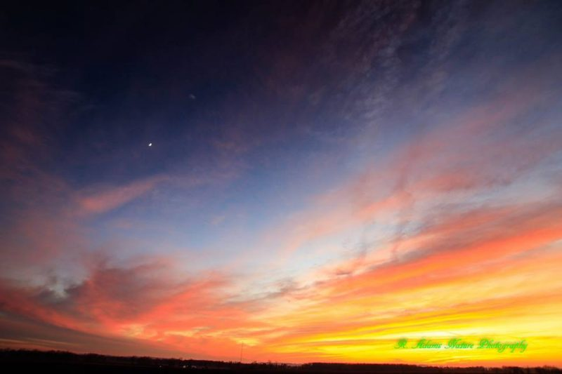 Vivid yellow and orange streaks in sky with blue sky above and single bright planet.