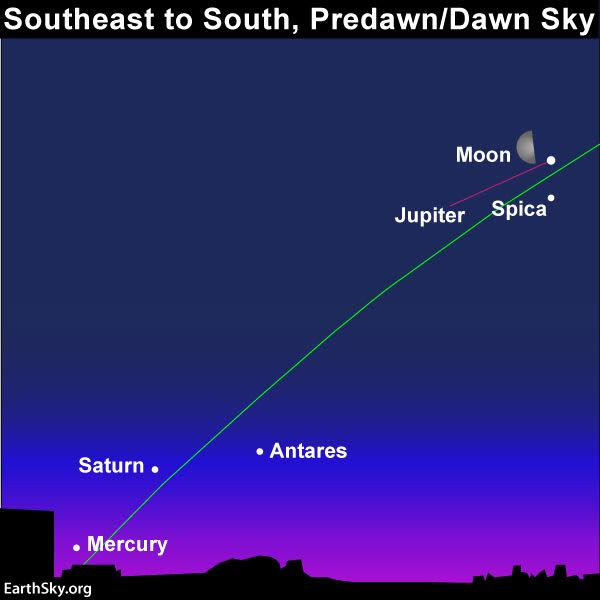 In the predawn/dawn sky on January 19, use the moon to locate Jupiter. An imaginary line from Jupiter through Saturn may help you find Mercury near the horizon.