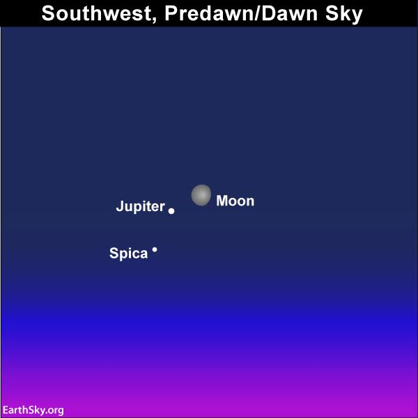 Out late tonight? See moon and Jupiter | Tonight | EarthSky