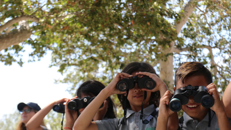 Four people looking through binoculars.