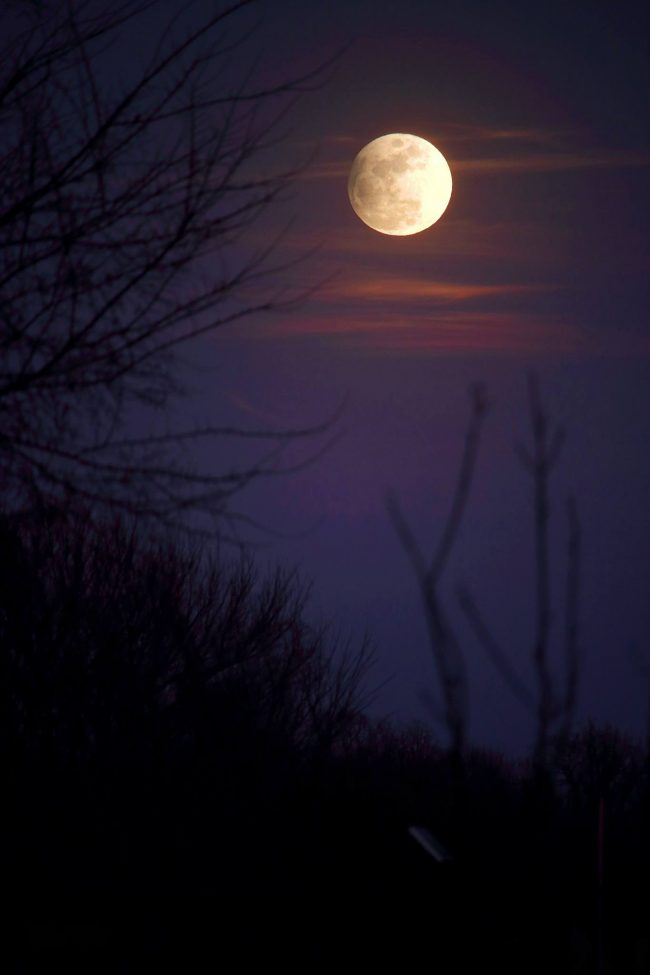 See it! February 10-11 lunar eclipse | Astronomy ...