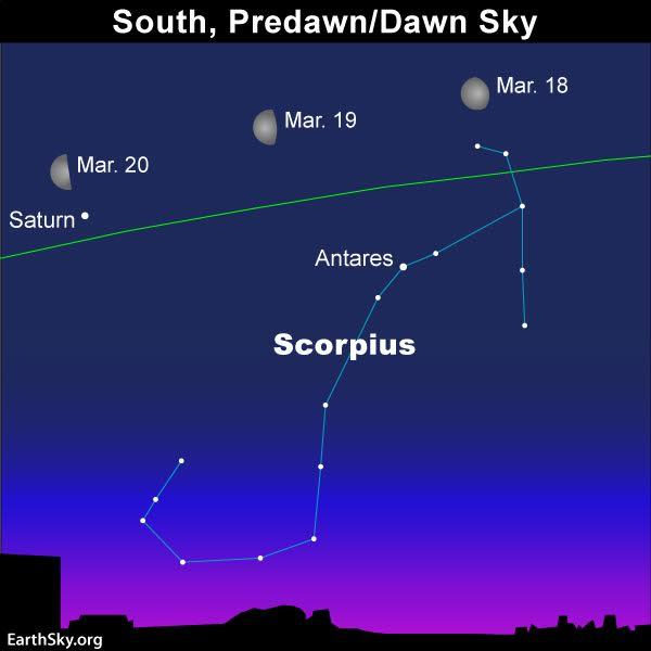 Chart of Scorpius