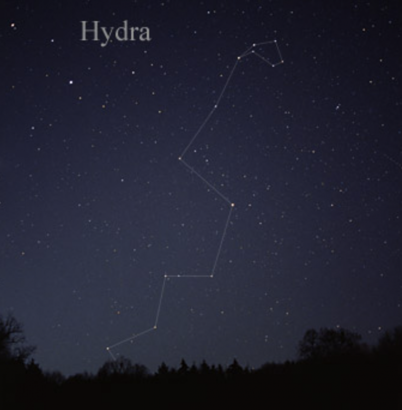 A long string of stars rising over a horizon, marked as Hydra.