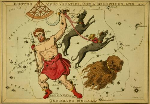 Old colored etching of constellations including two dogs.