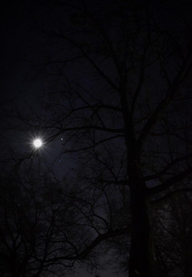 moon viewing jupiter tonight - photo #18