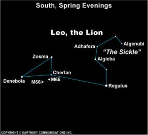 Diagram of constellation Leo with backwards question mark on right side labeled the sickle.